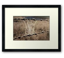 Frozen Web Framed Print