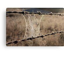 Frozen Web Canvas Print