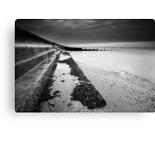 Another Feather In My Cap BW Canvas Print