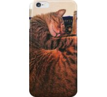Sleeping Cat Circular iPhone Case/Skin