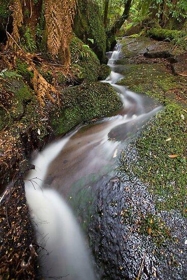 Myrtle Creek by Travis Easton