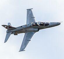 RAAF BAE Hawk demonstration by Michael Clarke