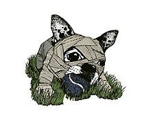 MUM DOG#03 T-SHIRT Photographic Print