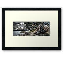 Natures Grip Framed Print