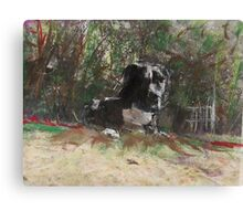hj1255 Canvas Print