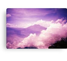 Purple Haze - Lomo Canvas Print
