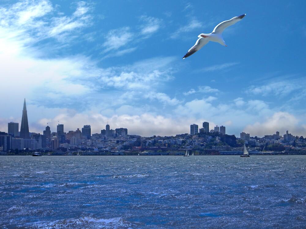 San Francisco Afternoon by David Denny