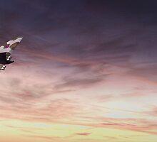 Vulcan Flight by J Biggadike