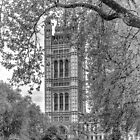 Houses of Parliament - Victoria Tower (2) in Monochrome by Andy Burke