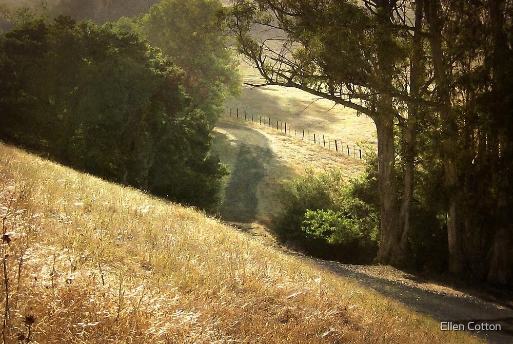 Along the Path by Ellen Cotton