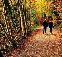 An Autumn Walk by Richard  Lane