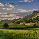Hill in light by Peter Zajfrid