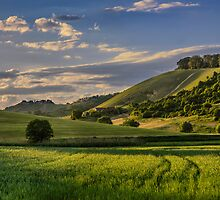 Hill in light by Peter Zajfrid