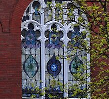 Stained Glass Window by vigor