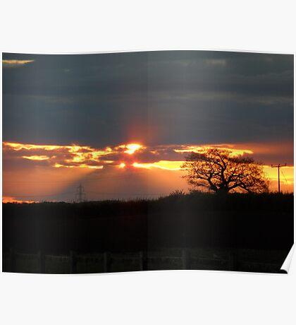 Sunset Horizon Poster