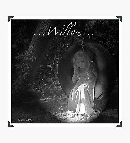 ...Willow... Photographic Print