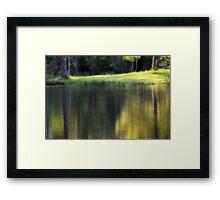 Green Pool Framed Print