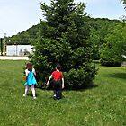 kids around a tree by jcarr