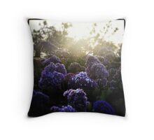 Nature's Natural Beauty Throw Pillow