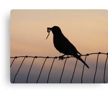 Evening Meal Canvas Print