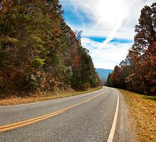 Mountain Roads - North Georgia Landscape by Mark Tisdale