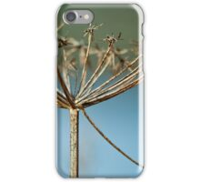 Dried Flower Head iPhone Case/Skin