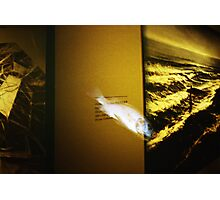 Art Fish - Lomo Photographic Print