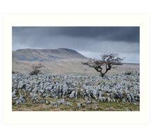 Whernside & the Limestone Fields, Yorkshire Dales National Park Art Print