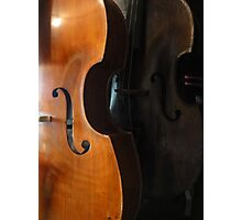Double double Bass Photographic Print