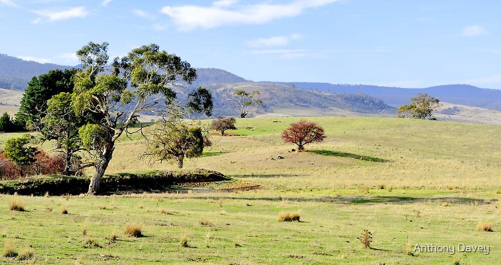 Glenora Landscape by AnthonyDavey