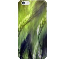 grainfield iPhone Case/Skin