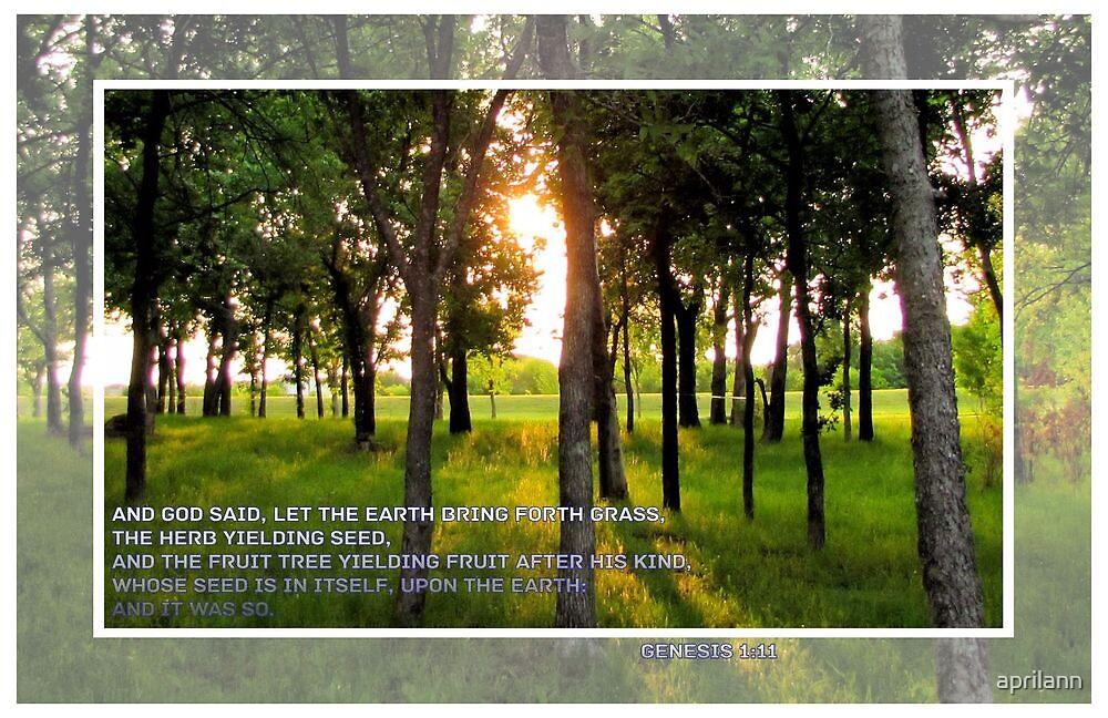 And God Said. . . by aprilann