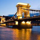 The Chain Bridge in Budapest lit by the street lights by kirilart