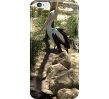 Pelican Against a Tree iPhone Case/Skin