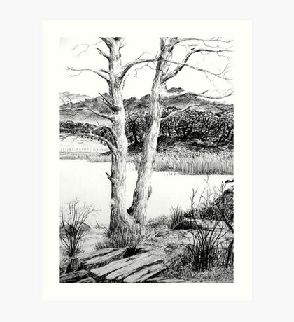 Windermere from Ambleside Art Print