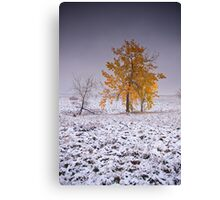 Warrior Of The Cold Canvas Print