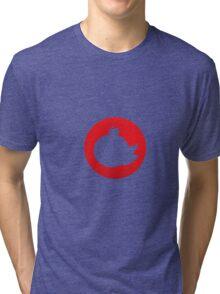 Summertime: Fruit 3 Tri-blend T-Shirt