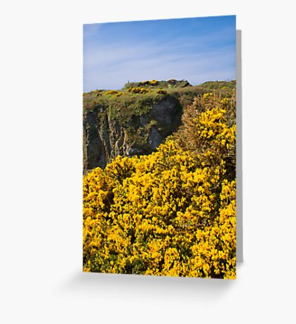 St Non's Bay West Wales Greeting Card