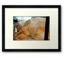 Valley News Takes Mick Down Again Framed Print