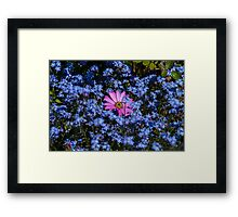 Only The Lonely Framed Print