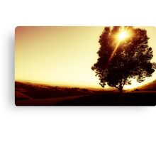 One Tree To Rule Them All Canvas Print