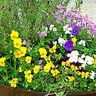 A Barrel Of Pretty Flowers by Fara