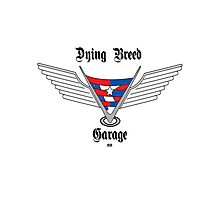 Dying Breed Garage Photographic Print