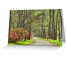 Plantation Road Greeting Card