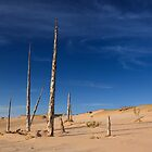 Ghost Forest, Sleeping Bear Dunes National Lakeshore by DArthurBrown