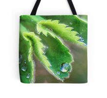 Water Droplets on Lady's Mantle Tote Bag