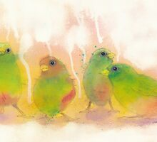 Sparrows by Cat Gabriel