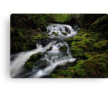 Quail Cascades Canvas Print