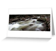 Downstream Race Greeting Card