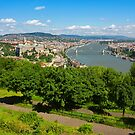 Budapest Panoramic view from The Gellert Hill with Danube river by kirilart